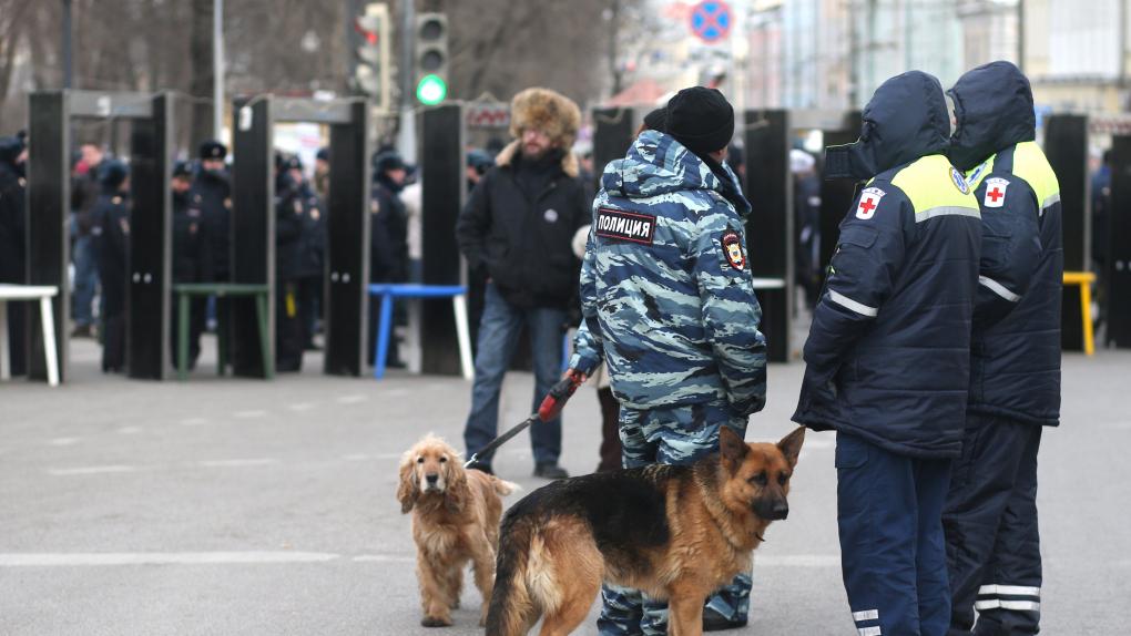 На фото: московская полиция во время шествия оппозиции в феврале 2014 года