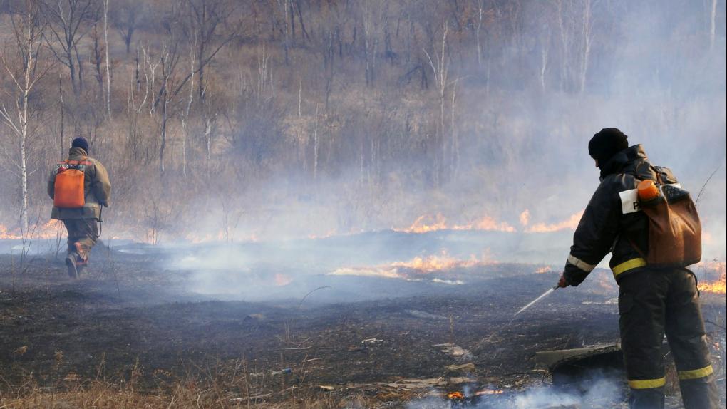 Тушение лесных пожаров в Амурской области