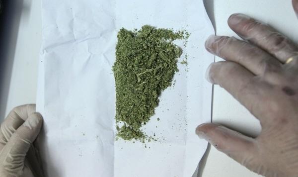 Изъятая марихуана в экспертно-криминалистическом центре Управления на транспорте МВД по ЦФО.