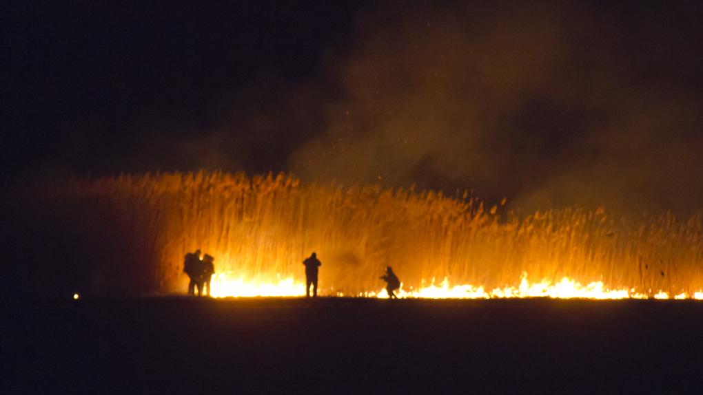 """Фото: кадр из фильма """"Волонетры. Игра с огнем"""""""